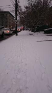 歩道の雪 (その1): 朝、家を出てしばらく歩いたあたりのところ。